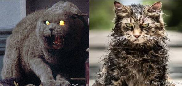 Risultati immagini per church pet sematary original vs remake