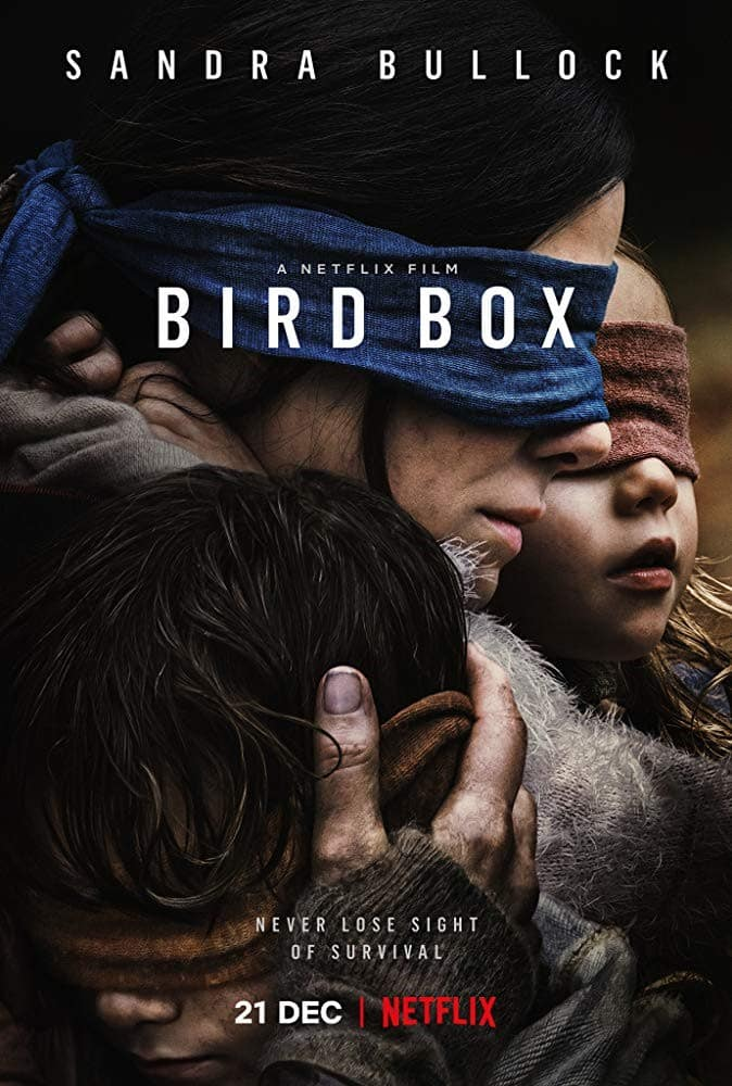 Birdbox movie poster